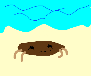 i was a drab little crab once.