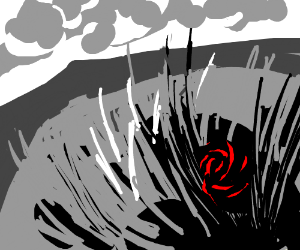 Rose in the middle of a grassy field
