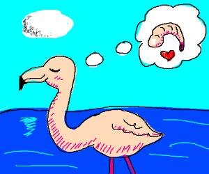 Pink bird dreams of shrimp