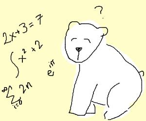 Doing Math With a Polar Bear.
