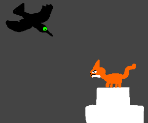 green eyed black bird attacking fox on cake