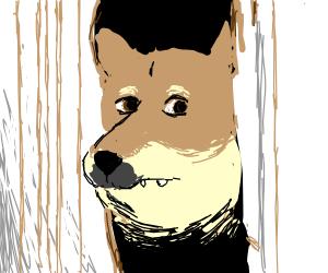 Doggo is peeking.