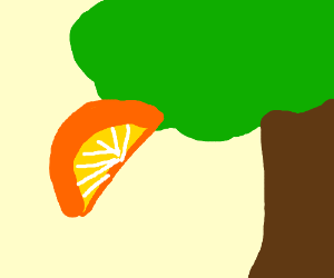 a giant slice of orange hanging on a tree