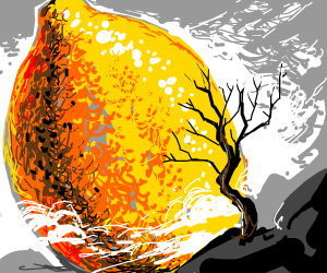 lemon dwarfs tree