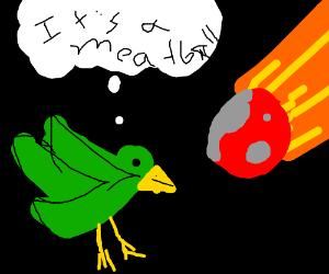 Green bird thinks meteor looks like a meatball