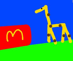 Homeless giraffe really wanted that big mac