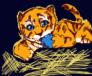 Baby Tiger playing
