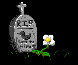 rubber duck died :( grave says lost to science