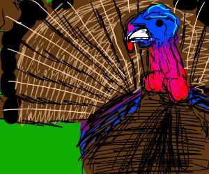 A Colorful Turkey