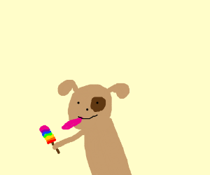 A dog with a you know what rainbow coloured