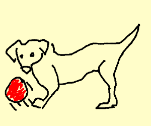 Dog kicking ball with... I hope that's his leg