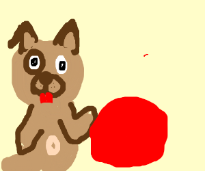 Cute dog playing with a red ball