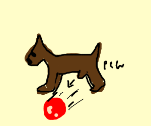 A dogs willy shot out a red ball