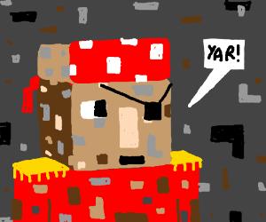Mnecraft Pirate