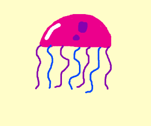 Jelly fish with blue and purple tentacles