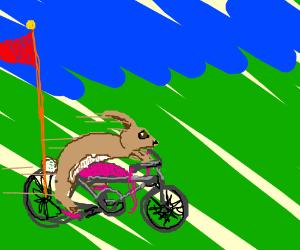 hipitty hopper ciclin' in an clopppity clopper