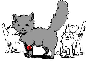 Nazi cats. Catzis.