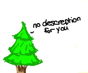Pine Tree says no description for you