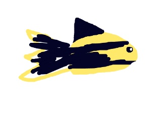 A yellow and black fish