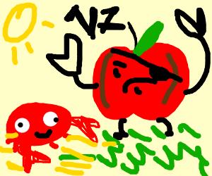 crab apple versus crab