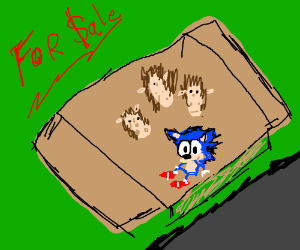 Hedgehogs and Sonic for sale (& Knuckles)