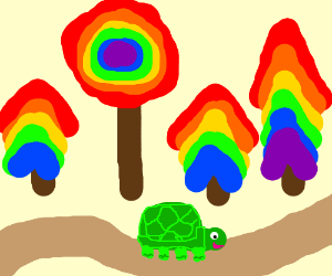 rainbow forest and a turtle