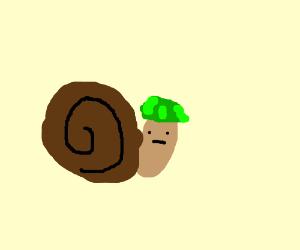 The great snail war of 2017 A.D.