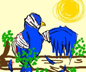 Hospital bird
