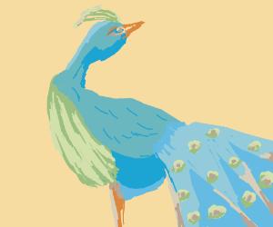 Japanese Peacock Art
