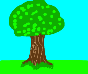 DRAW A VERY NORMAL TREE.