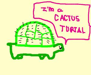 Cactus Turtal
