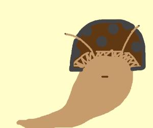This slug is a real fungi