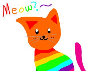 cute rainbow kitty