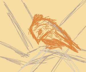 Birdpool trailer 2