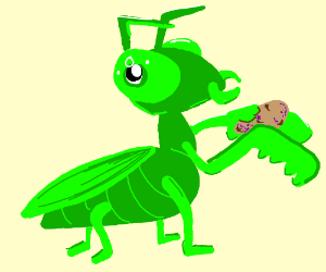Praying Mantis Eats A Blighty Potato