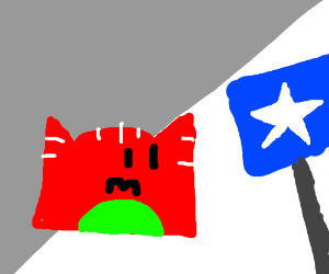 Red cat finds blue flag with white star in des