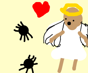 bald angel loves spiders