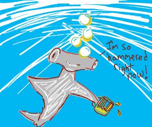 Drunk hammerhead shark