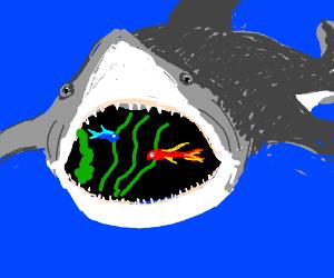 Aquarium inside shark mouth