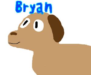 bryan the dog