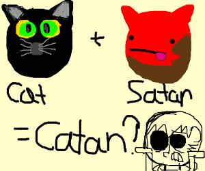 Catan went wrong