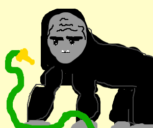 Gorilla with a hose