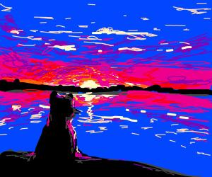 Cat watching the sunset