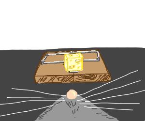 Mouse's PoV