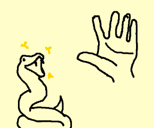 Snake finds out the miracle of hands
