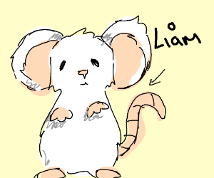 liam the mouse