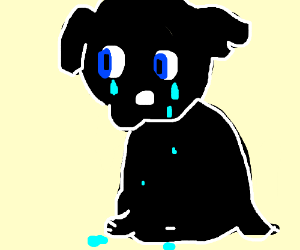 cute black dog is crying actual tears
