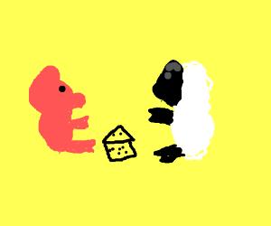 Pig and sheep eating cheese