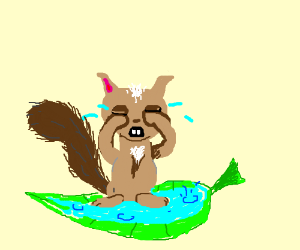 Squirrel's tears are pooling up in a leaf