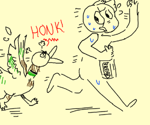 Ducks Attack Man For Bread